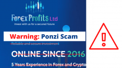 forexprofits review
