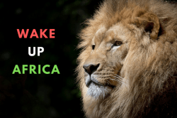 wake up africa